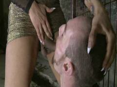 TS Seduction: The First Ever TS Gang Stuff On TS Seduction – The Gangster Orgy